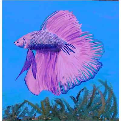 IrisPeters_Lone-Betta-24-x-24.jpg
