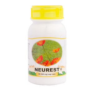Concentration and Memory Support - Neurest