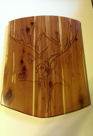 Whitetail Buck in Relief