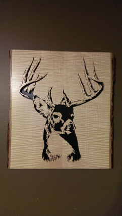 Whitetail Trophy Buck Portrait