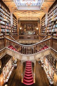 fancy library.jpg