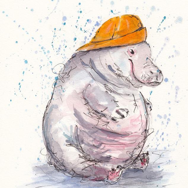 Hippo Rain