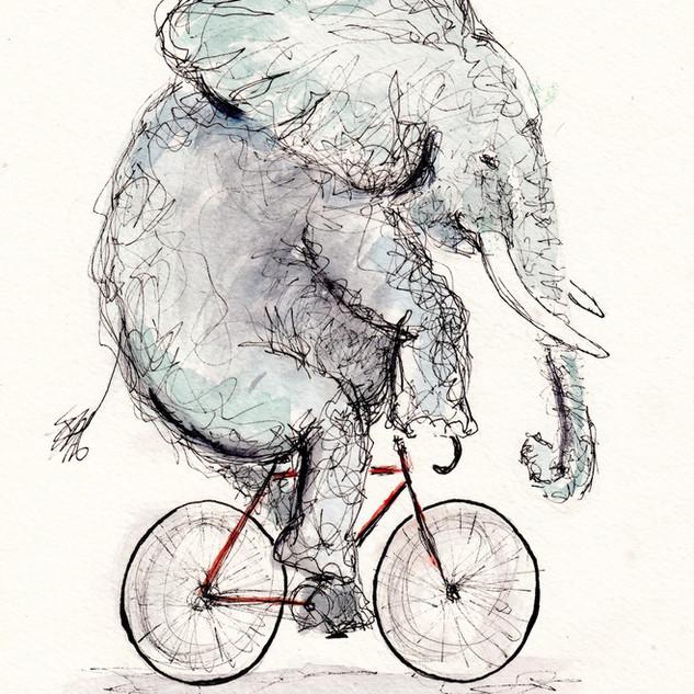 Elephant Cycle