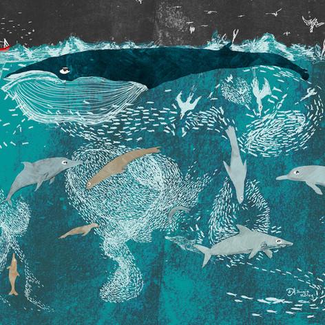 The Plight of the Sardine