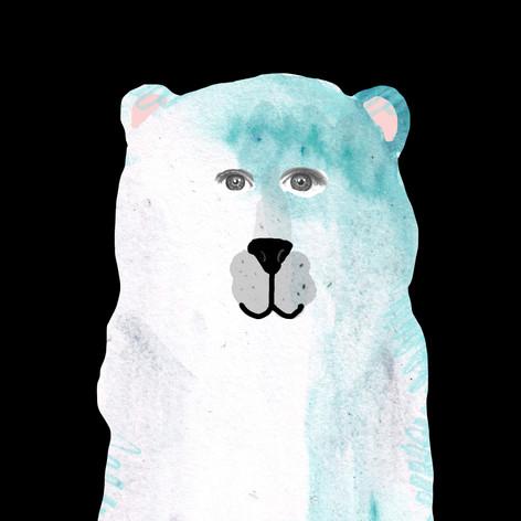 Paula the Polar Bear
