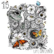 Goal 15 - Life On Land.