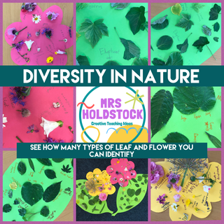 Diversity in Nature