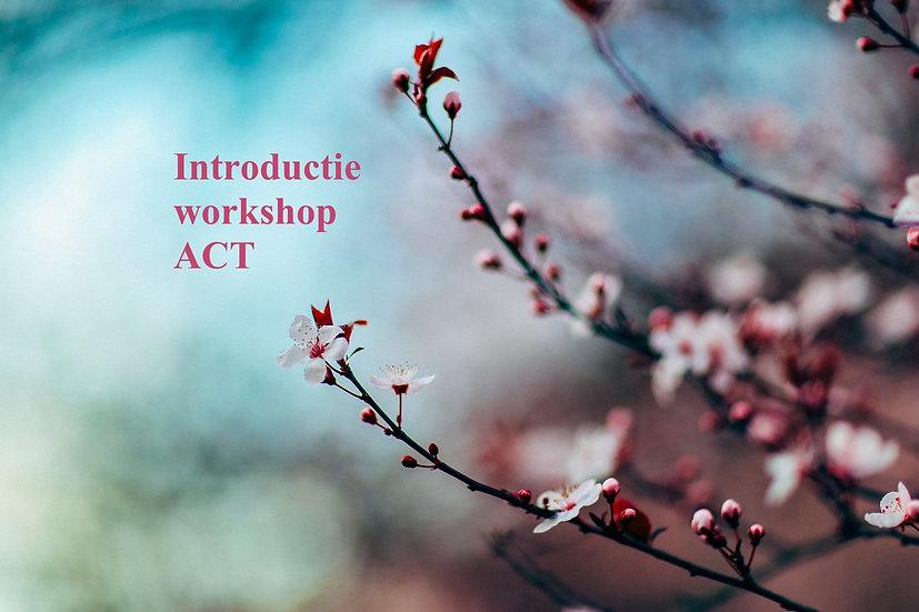 Introductieworkshop procesgerichte ACT, 22/10/2022