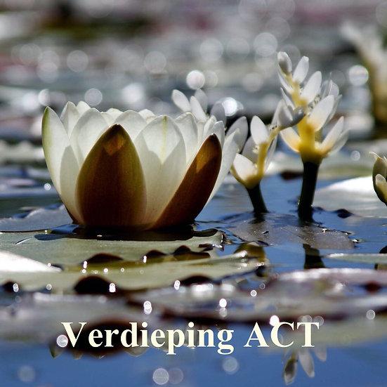 Verdiepingsdag ACT