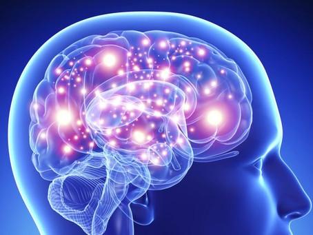 Mijn ACTieve brein