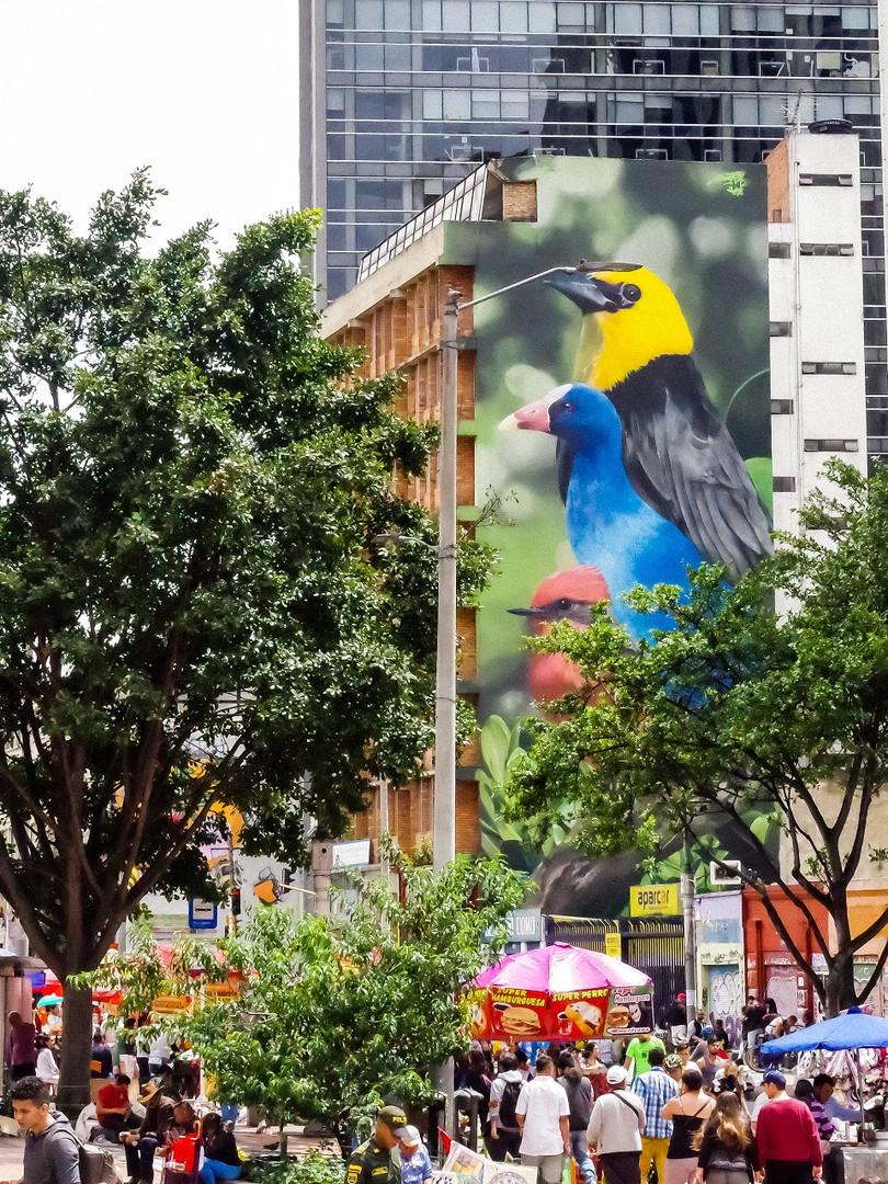 Monjita, Chigua y Pechirrojo. Ubicado sobre la Carrera 7, diagonal al Parque de La Independencia