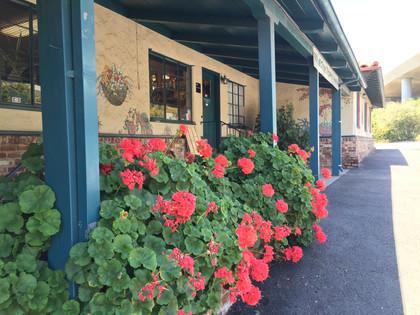 Exterior in bloom