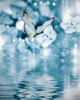 blue water butterfly.jpg