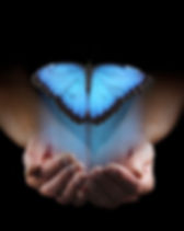 butterfly hologram in hands.jpg