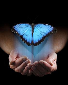 butterfly hologram in hands.jpg