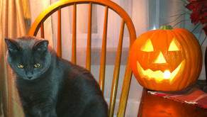 8 Tips for Feng Shui and Halloween!