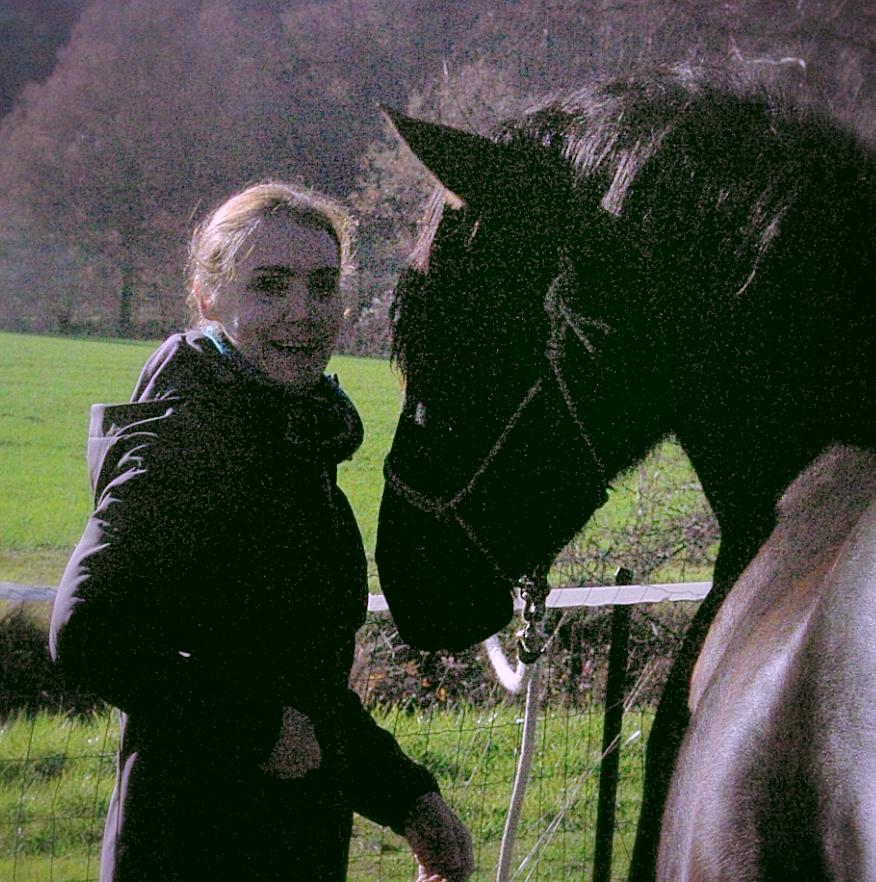 Bien être du cheval