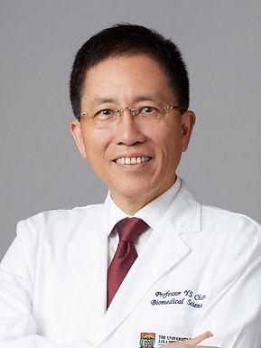 Professor CHAN Ying Shing