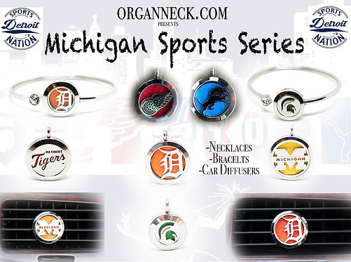 Michigan Sports Series