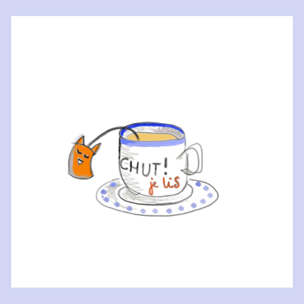 à lire chez soi, avec un thé, un plaid, un chat