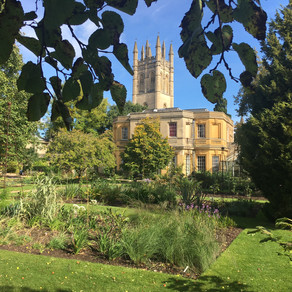 The Oxford Botanic Garden
