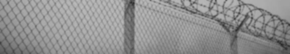 fencing_edited.jpg