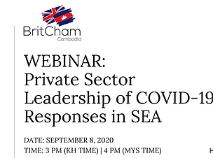 WEBINAR_ private sector COVID-19.png