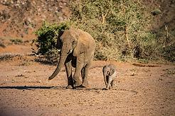 Namibia-133.jpg