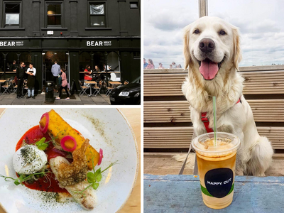 Where To Eat In Dublin With Your Dog