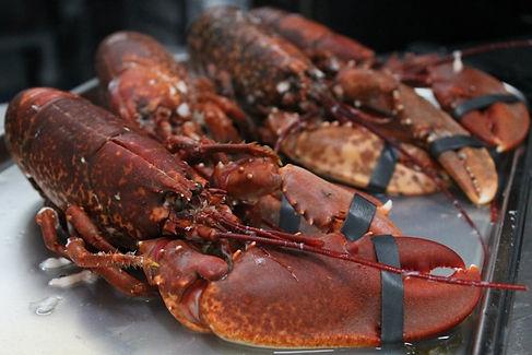Lobstar Dublin