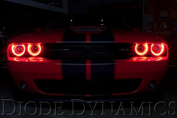 RGBW LED Module Diode Dynamics