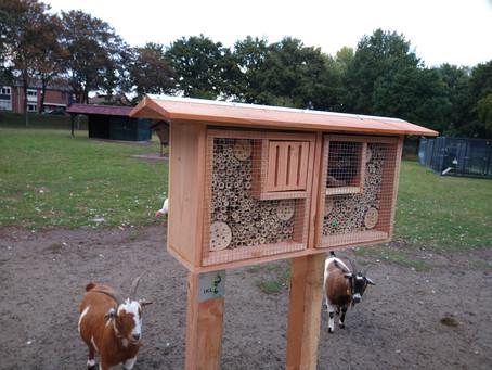 2e insectenhotel geplaatst in dierparkje
