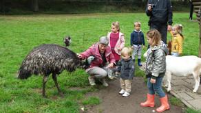 Openstelling Werelddierendag goed bezocht