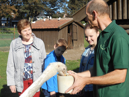 Breerpark open op Za 05/10 t.g.v. Werelddierendag