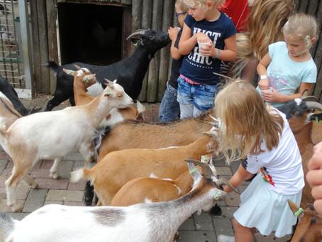 Kindervakantiewerk op bezoek bij de Breerdeerkes