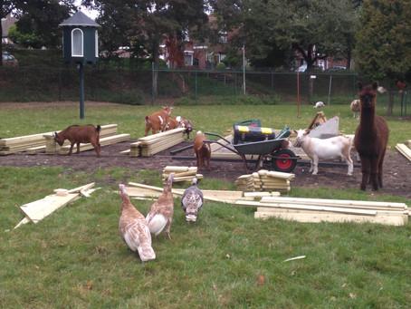 Start bouw alpaca/herten overkapping