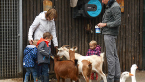 Za 2 oktober 2021 Werelddierendagopenstelling Dierparkje in het Breerpark