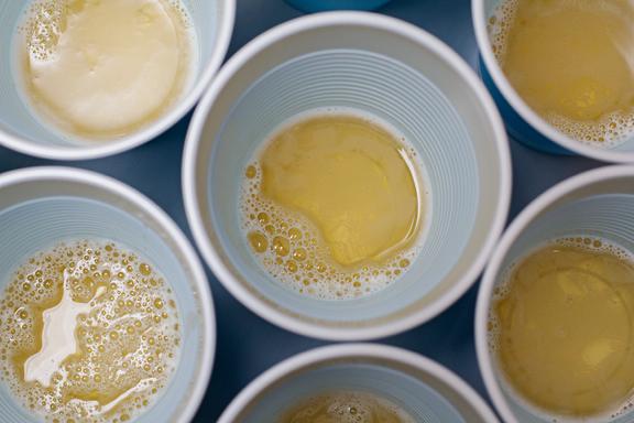 beer_pong.webp