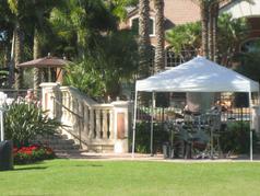 Tent w Palms (offest) copy.JPG