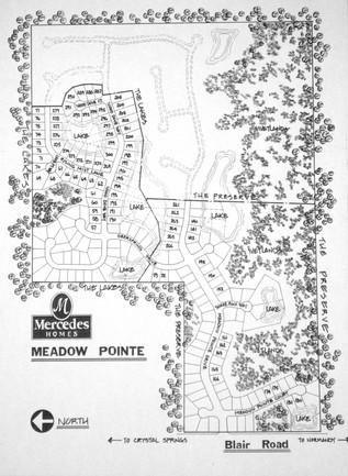 Site Plan Subdivision (pen & ink) 377 co