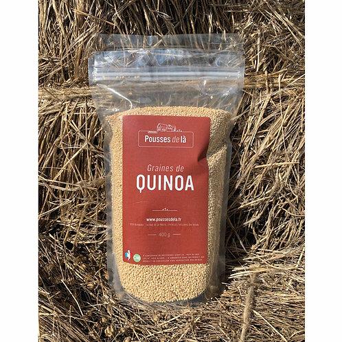 Quinoa bio de Normandie