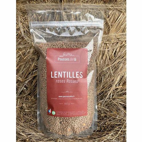 Lentilles roses CAB - 900g