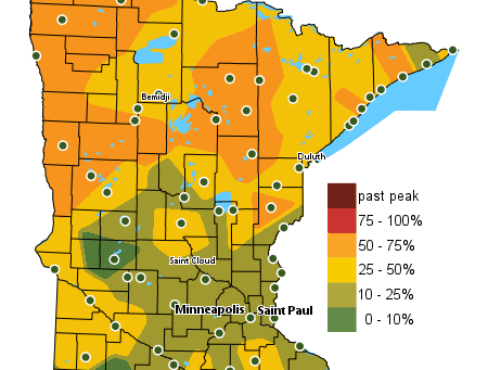 Minnesota Fall Color Finder is Brilliant