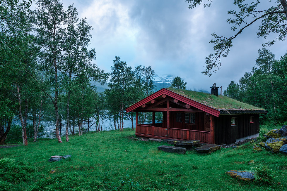 the-grass-roofed-houses-in-norway-PMGK2Y