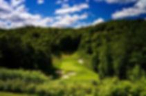 TreetopsThreetops_7.jpg