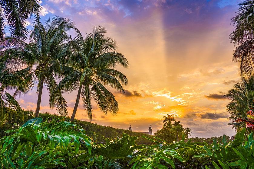 florida-usa-sunrise-P7PT9D5.jpg
