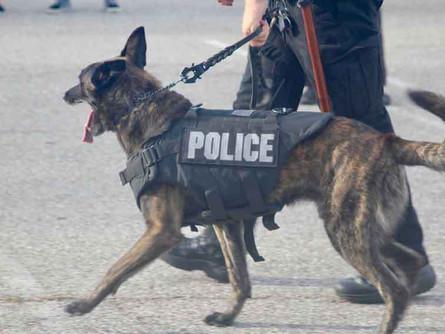 Winnipeg Police Canine Memorial