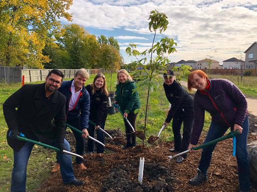 tree plant sept 2019.jpeg