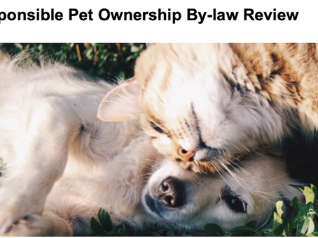 Share Your Opinion On The Responsible Pet Ownership By-law Review
