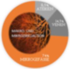 2020-03-24 11_44_24-Grafik Mikrozirkulat